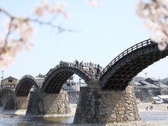 錦帯橋の春景 2018