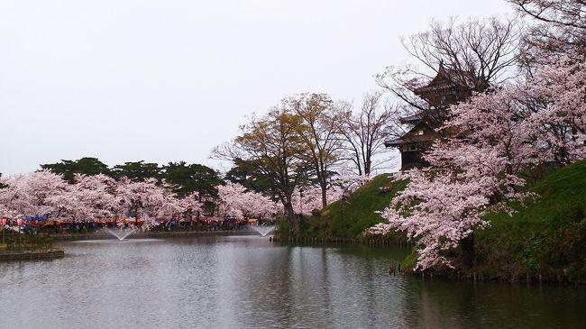 日本三大夜桜のひとつとして知られている『高田城』<br />今回は昼間に行ってみました。<br /><br />地元富山はすっかり葉桜になりつつありましたが、高田公園は満開です(@^^)/~~~<br />昨日までは初夏の陽気だったのに、今日は冬に逆戻り、寒い~( ノД`)シクシク…<br /><br />高田城桜祭りの期間中は、約3000個のボンボリが設置されています。<br />高田公園とその周辺の約4000本の桜が、お堀の水面に映し出され、とっても綺麗でした。<br />(お天気よければ最高だったのに残念』<br /><br />歴史公園100選、さくら名所100選にも選ばれた園内には、国の登録有形文化財に指定された小林古径邸(要入館料)もあります。