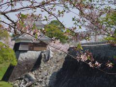 2018年 熊本城 行幸坂の桜の通り抜け 恒例の熊本・天草の旅【その2】