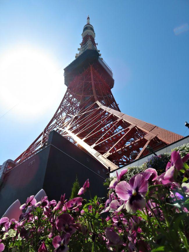 TOKYO TOWER 60th ANNIVERSARY<br />。:+* ゚ ゜゚ *+:。:+* ゚ ゜゚ *+:。:+* ゚ ゜゚ *+:。<br />60周年記念!東京タワー<br /><第1弾>でぇ~すww<br />  ЧЁ――d(,,・∀・,,)b――i!♪<br /><br />いつ見ても東京タワー素敵ですねぇ~☆<br />今では高層ビルやタワーマンションがそびえ立ち、希少立地で資産価値が落ちにくい都心の駅近に住むパワーカップル、パワー世帯が増える一方で、郊外に家を建てたお年寄りたちは通勤電車を卒業して、都心から離れてひっそりと暮らしています。<br />年収が多いと「終の棲家(ついのすみか)」という意識はなく、利便性を追求し、いい物件があれば又買いたい、不動産を購入・売却するという人達が増えてきました。<br /><br />東京タワーが誕生して60年目!<br />高度経済成長下の1958(昭和33)年から東京の電波塔として50年以上にわたりテレビやラジオの電波を送り続けたきた東京タワー。<br />時代と共に環境が変化していき、その役割を東京スカイツリーにバトンタッチ!<br />今では予備電波塔して利用されていますが「日本のシンボル」である事には変わりありません。<br />という事で、現在の東京タワーをあらゆる角度から眺めてみよう★━━<br /> ☆*。★゚*♪ヾ(*-∀-)ノルンタッタ~♪<br /><br />60周年記念の東京タワーにからんだ旅行記は<br /><第1弾>~<第3弾>までUPしまーす♪