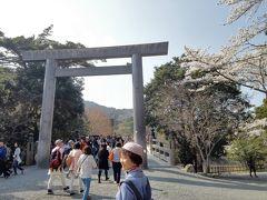 遷宮後お初のお伊勢さん詣は満開の桜の下