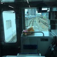 【2015年】仙石線復旧の日に仙石東北ラインに乗る。