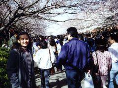 上野桜祭り 1994/04/03 (個人記録)