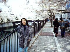 大岡川の桜 1994/04/10 (個人記録)