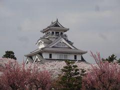 ☆2018年桜旅 第1弾!18きっぷで琵琶湖☆ 長浜城 伊東園 彦根ビューホテル No2