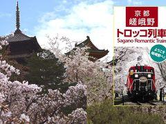 京都の桜とトロッコ列車観覧