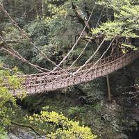 徳島で祖谷のかずら橋と小便小僧