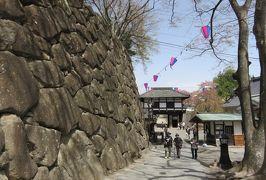 2018春、長野の百名城巡り(1/25):4月16日(1):小諸城(1):名古屋からJRで塩尻へ、塩尻から観光バスで名城巡り