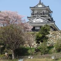 井伊直虎ゆかりの地を訪ねて(1)浜松城は質実剛健、シンプルな出世城