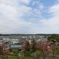 静岡遠州へ その6   向かい風が強く、サイクリングは小堤山公園まで行って引き返すことに。