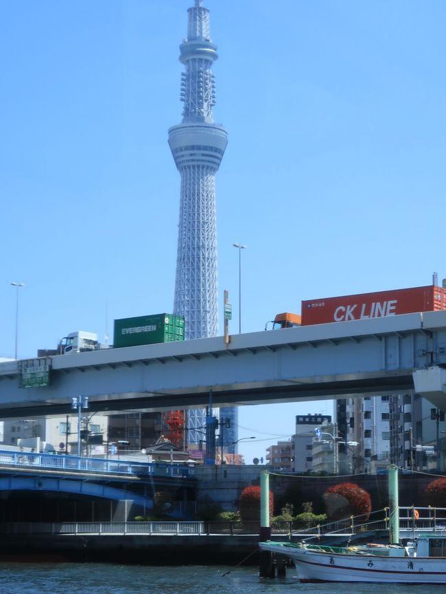 隅田川ライン<br />浅草吾妻橋から浜離宮庭園を経由し日の出桟橋までを結ぶコース。<br />途中、隅田川に架かる様々な色・形の橋をくぐる片道約40分の13橋クルーズ。桜の時期は隅田公園に咲く桜を楽しむことができるお花見船として運航しています。<br />http://www.gotokyo.org/shuun/jp/course/054.html より引用<br /><br />水上バスとは、河川及び港湾地域を運航する定期航路およびその航路を運航する船舶を指す。複数地点間を往復するものが多いが、定期に一地点から出発して巡航する観光航路を指すこともある。<br />東京においては、1885年に隅田川で運行を始めた乗合蒸気船が水上バスの起源ともいえる。<br />(フリー百科事典『ウィキペディア(Wikipedia)』より引用)<br /><br />東京クルーズ については・・<br />http://www.suijobus.co.jp/<br />