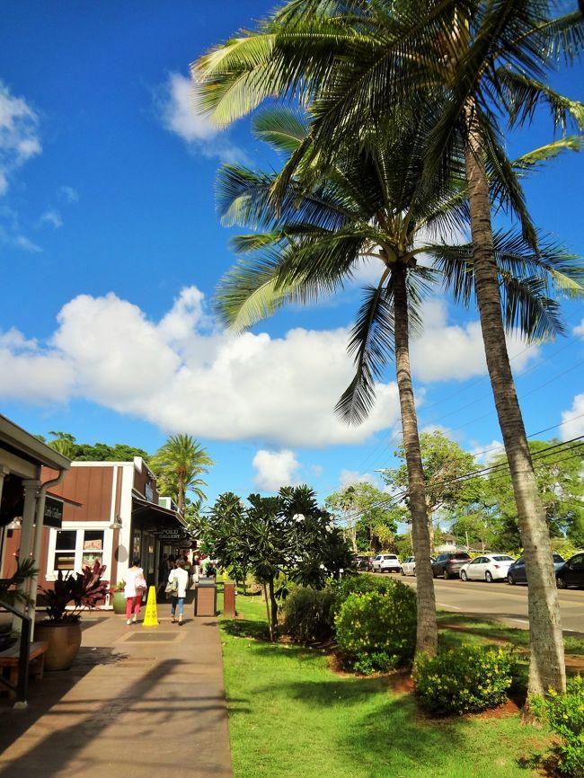 10月に妹が入籍し、ハワイで挙式を挙げることになったので、親族揃ってハワイへ行ってきました☆<br />また、私も婚約していたので、私の婚約者も一緒に同行し、婚前旅行を楽しんできました。<br /><br />私にとっては生まれて初めての海外旅行。<br />3泊5日の短いスケジュールでしたが、初めてのハワイを満喫してきました(^^)/<br /><br />当方(新婦側)の列席者は、父、母、私、私の婚約者の計4人。<br />相手方(新郎側)の列席者は、母、伯父、伯母、従兄弟の計4人。<br />(ホテルや航空機は、新郎側と新婦側とで別々でした。)<br /><br />この旅行の記録は、6冊に分けてまとめています。<br />(下記行程の◆が、本旅行記の該当部分です。)<br /><br />《1日目》<br />◇成田→→→ホノルル<br />◇アラモアナセンター<br />◇Tギャラリア ハワイ by DFS<br />◇ロイヤルハワイアンセンター<br />◇シェラトンワイキキ(泊)<br /><br />《2日目》<br />◇ビルズ(bills Hawaii)<br />◇ワイキキビーチ散策<br />◇挙式・レセプションパーティー@The Terace By The Sea<br />◇シェラトンワイキキ(泊)<br /><br />《3日目》<br />【JTB限定】オアフ島一周観光ツアー<br />◇タンタラスの丘展望台<br />◇モアナルア・ガーデン<br />◇マカデミア・ナッツ・ファーム<br />◇ハレイワビーチ<br />◆ハレイワ散策<br />◆ソープファクトリー<br />◆ワイアルアコーヒー<br />◆ドール・プランテーション<br />◆クカニロコ・バースストーン<br />◆ワイキキビーチ散策<br />◆シェラトンワイキキ(泊)<br /><br />《4日目・5日目》<br />◇シェラトンワイキキ<br />◇ホノルル→→→成田