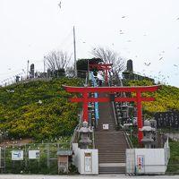 シルバーフェリーで行く青森桜旅(路線バスで行く八戸市内めぐり)