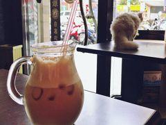 ぷらっと台北1泊2日 猫とお茶と花生調査とプチオフ会
