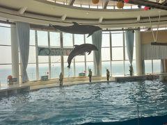 驚きの茨城県 大洗観光と百里基地 (6-2) イルカが跳びまくり!アクアワールド大洗水族館