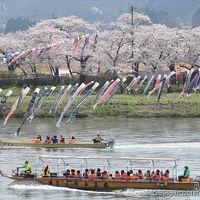 岩手・秋田の桜とグルメ弾丸旅