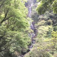 豪快なおせりの滝を見に行って見ます   ☆宮崎県東臼杵郡美郷町