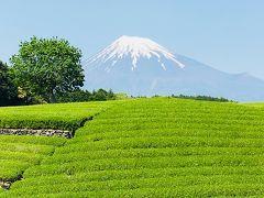 ぴーかん富士三昧