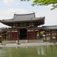 京都を歩く 伏見稲荷神社、 平等院鳳凰 二日目