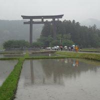 「熊野・本宮」 丸山千枚田を散策し、トロッコに乗って湯ノ口温泉に入浴し、熊野本宮大社を参拝して、熊野本宮温泉郷と熊野市の世界遺産を見て周る旅