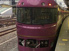 臨時列車に乗って東京近郊区間大回り乗車