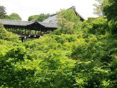 新緑が眩しかった2018京都7日間 1日目 ~札幌~和にち~東福寺・法堂と光明宝殿~最勝金剛院~蜂巣~