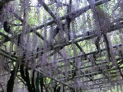 西明石を散策 住吉神社・茨木酒造・薬師院
