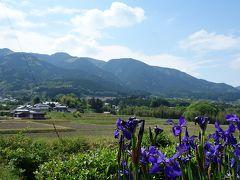 大和郡山で墓参を済ませて風の森神社を参拝他