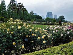 2017年5月 東京3日目 その3 新宿御苑 フランス式整形庭園でバラを見ました。日本庭園も通りました。