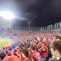 プロ野球観戦 ヤクルトー広島 (神宮球場)