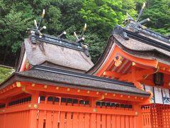 2018春、熊野の世界遺産巡り(4/5):4月30(4):実宝院跡、木斛の大樹、赤鳥居、那智山熊野権現扁額、狛犬