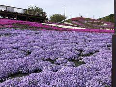 ジュピアランドと甲子温泉露天風呂 1  芝桜と新緑の旅