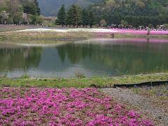 忍野八海から富士芝桜まつりへ