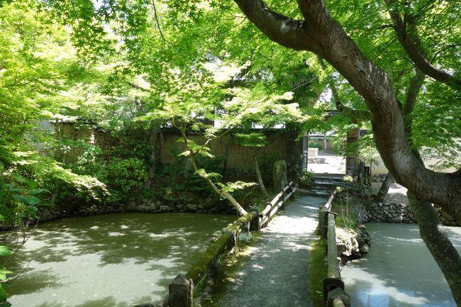 昨日は山の辺の道を歩き倒し、今日は帰る日。<br />奈良駅周辺でなるべく人混みをさけながら、最後の観光は割と王道。