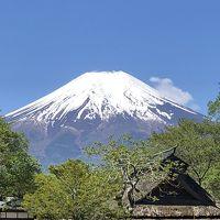 京都から富士山を見にドライブ旅行 山中湖→焼津→浜名湖