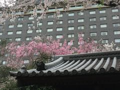 おひとりさまホテルステイ~日本庭園が素晴らしい都心にいることを忘れさせてくれるホテル