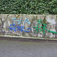 箱根の森散歩