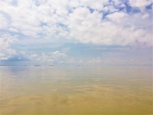 東南アジア好き、遺跡好きにも関わらず、なぜかこれまで一回も訪れたことのなかったカンボジア。<br />休みの日数的にも気分的にもいい感じだったので、やっと行ってきました。<br />1都市滞在で、全日程ともシェムリアップに宿泊しました。<br /><br />*この日は、トンレサップ湖の半日ツアーに参加してきました。<br /><br />==旅程==<br />5/2 移動(関空-ハノイ-シェムリアップ)<br />5/3 アンコール遺跡めぐり<br />5/4 ベン・メリア<br />5/5 プリア・ヴィヘア<br />5/6 トンレサップ湖、移動(シェムリアップ-ハノイ-関空)<br />5/7 帰国<br />======