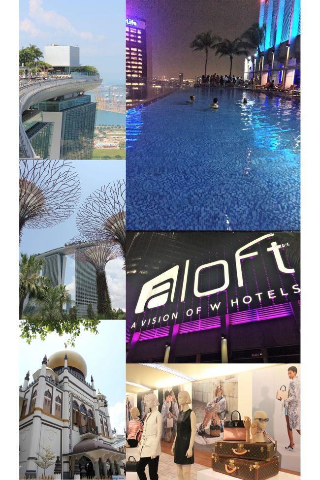2018GW シンガポールとマレーシアへ 4日目:シンガポール市内観光(サンズスカイパーク、ガーデンズ・バイ・ザサンズ、アラブ人街)、そしてSQでクアラルンプールへ!