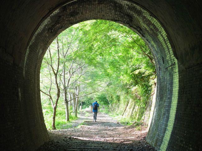 6月に行く予定のウクライナ。短期の日程ではネット上で話題の<br />「愛のトンネル」←ネーミングがベタ(笑)へ行けそうにない。<br />元々一人旅で「愛のトンネル」なんてちょっと寂しいような。<br /><br />すると何と関西で代替案を見つけ、<br />ちょうど相棒も日本に帰国して温泉へ連れていけ!っとうるさい。<br />よっしゃ~、日本版「愛のトンネル」と温泉の両方を兼ね備えた<br />武庫川渓谷の廃線跡のハイキングに決定!<br /><br />渓谷沿いをただ歩くのではなく、廃線跡の枕木に数々の真っ暗なトンネル。<br />超スリリングなハイキングは懐中電灯必須のコース。<br />ゴールは武田尾温泉の日帰り入浴に懐石ディナーで満足満足!<br /><br />JR生瀬駅→旧福知山線廃線跡→武田尾温泉→JR武田尾駅