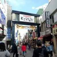 休日の武蔵小山、戸越銀座で買い食い、西小山で猫カフェ