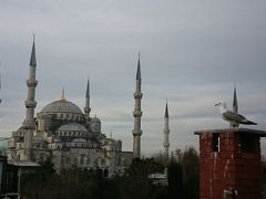 年末年始のトルコ 5歳&7歳子連れ旅(ホームステイも!) イスタンブール篇(5)