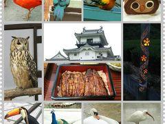 掛川城と花鳥園と満月の下で茶摘み会
