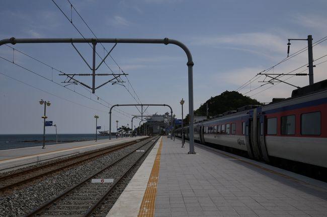 今年もゴールデンウィークは韓国に行ってきました。前半は韓国後半は台湾と2回に分けて鉄道の旅をしてきました。<br />当初韓国は前半3日間の予定でしたが、会社でGW直前になって5月1日と2日は交代で休もうという事となり予定変更のできる韓国を5月30日帰国から5月1日帰国に変更しました。3日間プサン観光の予定で特に計画をたてていなかった旅行から急きょ4日間になりKORAIL PASS(コレールパス)を使用し韓国鉄道の旅となりました。<br />今回韓国鉄道の旅は昨年12月22日に開通したKTX江陵線に乗車する事と2015年4月2日に開業したKTX浦項線(勝手に呼んでます)と今年1月28日に開通した東海線に乗車する事を柱に計画をたてました。<br />第2日目はソウルから江陵線KTXで江陵に到着。江陵で鏡浦(キョンポ)を観光した後シャトルバスで正東津駅にきました。<br />今回は正東津駅から無窮花号で栄州に向かいます。<br />栄州では楽しみにしていた栄州韓牛カルビサルを食べる事が出来ました。<br /><br />全日程<br />第1日 2018年4月28日<br />    博多(8:30分発)ビートルFJ113 釜山(11:35分着)<br />    釜山(15:10分発) KTX156  ソウル(17:25分着)<br /><br />◎第2日 2018年4月29日<br />    ソウル(8:01分発) KTX142 江陵(9:58分着)<br />    江陵(12:30分発)シャトルパス 正東津(12:55分着)<br />    正東津(13:54分発)無窮花1691  栄州(17:24分)<br /><br />第3日 2018年4月30日<br />    栄州(5:50発) 無窮花1821  大邱(9:01分着)<br />    大邱(9:20分頃) 地下鉄 (9:40分頃)東大邱<br />    東大邱(10:15分)KTX山川455(10:40分着)浦項<br />    浦項(10:56分発) 東海線1735  盈徳(11:30分)<br />    盈徳(11:50分発) 東海線1736  浦項(12:24分着)<br />    浦項(15:30分着)KTX山川466  東大邱(16:07分着)<br /><br />第4日 2018年5月1日<br />    東大邱 (9:00分発)SRT309  プサン (9:47分発)<br />    釜山(12:10発)ビートルFJ402 福岡(15:15分着)<br /><br />