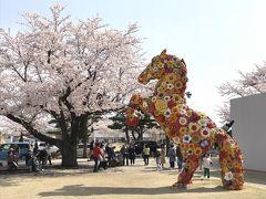 201804-04_十和田市内桜散策&十和田市現代美術館