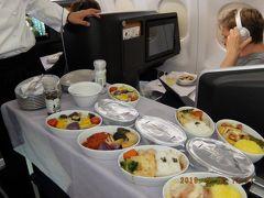 6泊でスイスからオランダまで6か国を巡る欲張り旅(主にチューリッヒまでの機内)