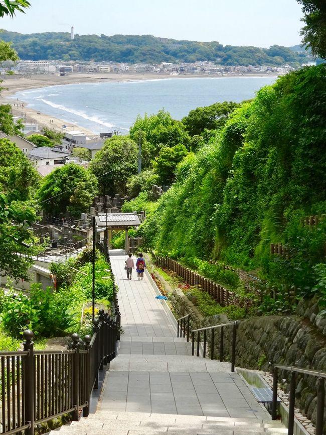 新緑の美しい季節になり妹たちと鎌倉にでかけました。今回は紫陽花で混み合う前の鎌倉長谷エリアを歩いてきました。<br />紫陽花の季節には整理券も発行されるほどの混雑をみせる長谷寺やその周辺もこの日はまだ静かでゆっくり新緑の中を散策できました。