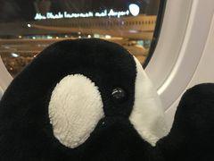 シャム旅中東からモロッコへ、そしてヨーロッパへ 【最終回】(21日目)マドリード空港編