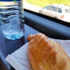 【4】ずっと4時間車窓からの景色(長距離バス)☆ビリニュスからリガ