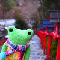 寒いけど、京都行っちゃう?